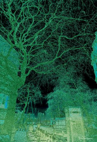 Natures Urban Dialogue
