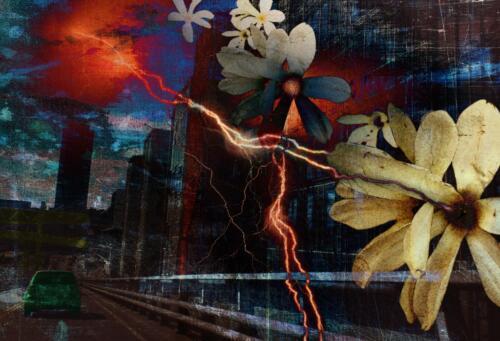 Urban Creation